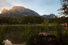 Wald-See